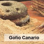 Canarian gofio, a great food for all